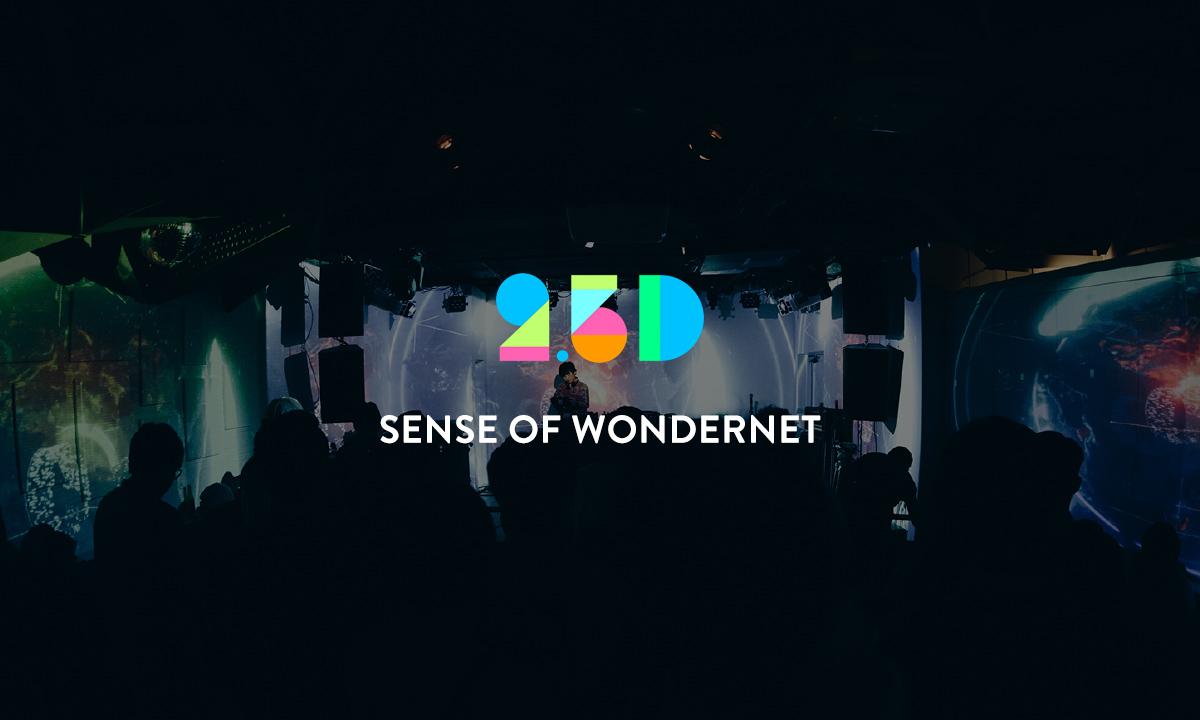 2.5D SENSE OF WONDERNET